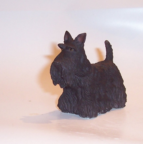 Best of Breed Scottish Terrier standing