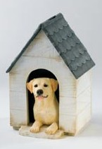 Yellow Labrador in Kennel Moneybox