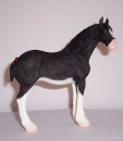 Best of Breed Clydsdale Horse Black