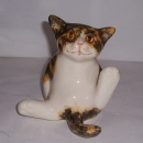 Winstanley Cat Torty & White Tail Out Size 2