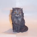 Best of Breed Blue Persian Sitting