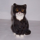 Winstanley Cat Black & White Sitting Size 1