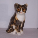 Winstanley Cat Torty and White Sitting Size 2