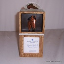 Thoroughbred Horse Moneybox and Picture frame