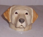 Quail Yellow Labrador Faced Egg Cup