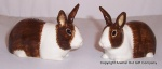 Dutch Rabbit Salt and Pepper  Set Brown