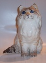 Winstanley Cat  Colour Point Persian Sitting Size 4